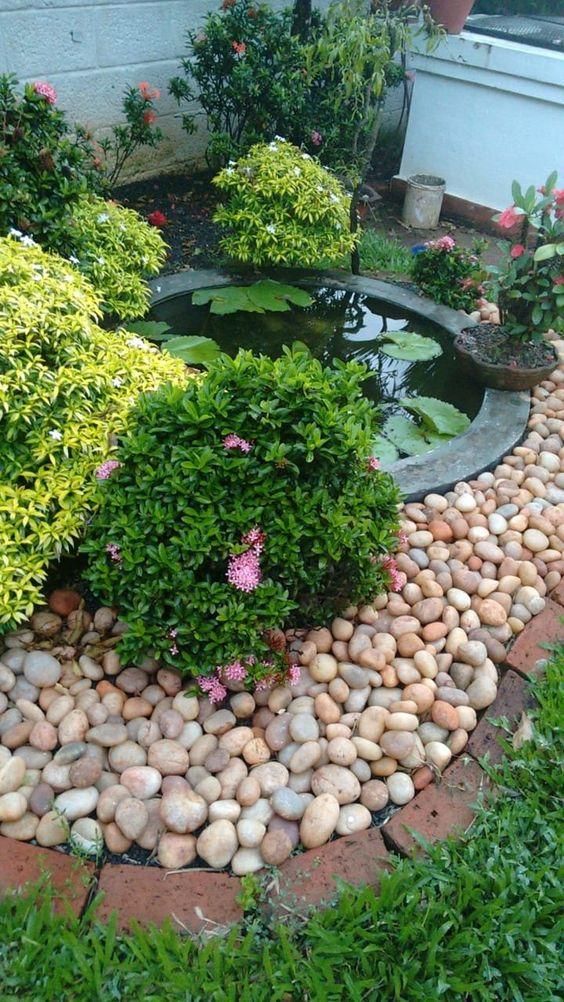 simple fish pond