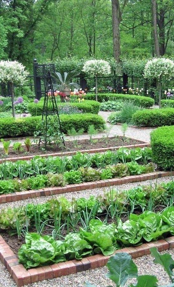 vegetable Dutch garden landscaping
