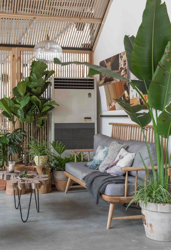 bamboo pergola for tropical interior design