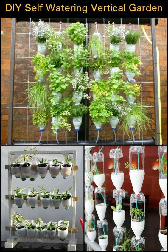inexpensive bottle planter