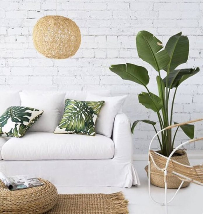 best relaxing tropical living room ideas