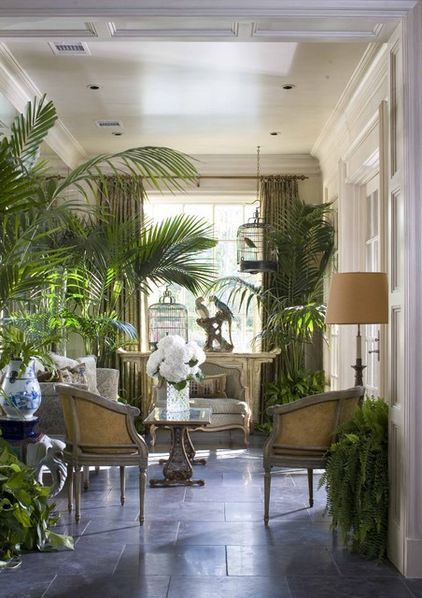when the greeneries take the all attention in this tropical living room ideas
