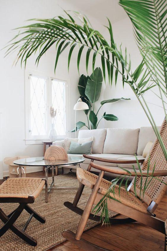 Minimalist tropical living room decor