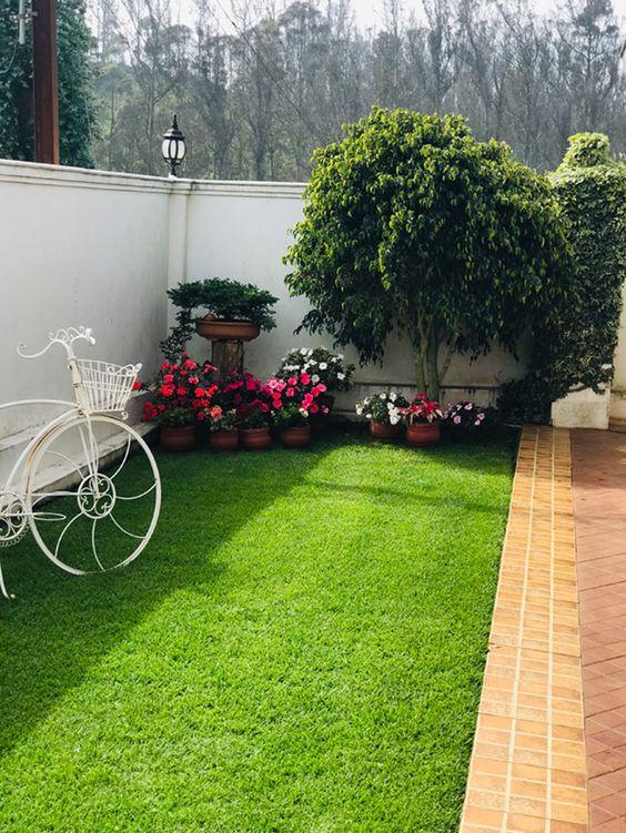 beautiful small lawn