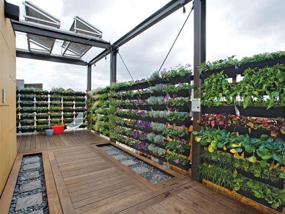 vertical garden ideas on rooftop