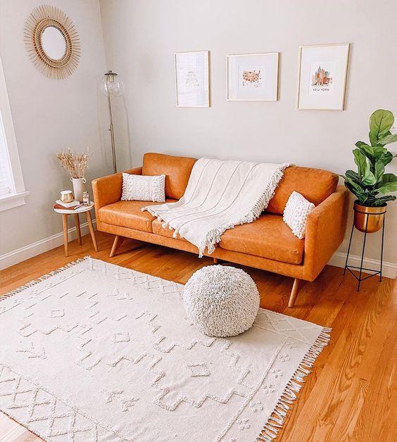 Scandinavian living room focus on one color scheme