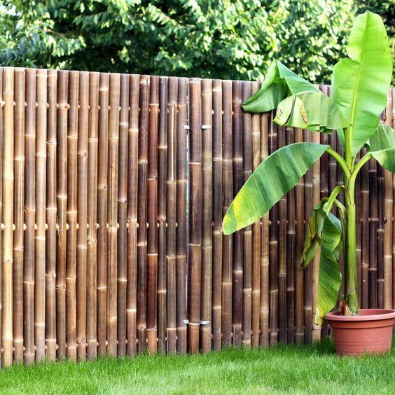 bamboo fencing idea