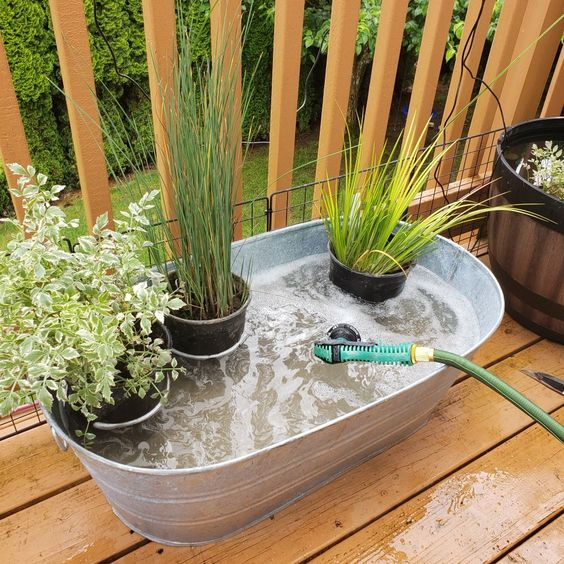 container pond ideas