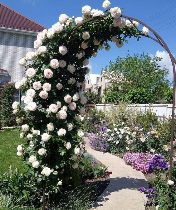 garden arch to improve the curb appeal