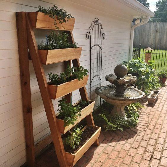 growing parsley in vertical cedar planter