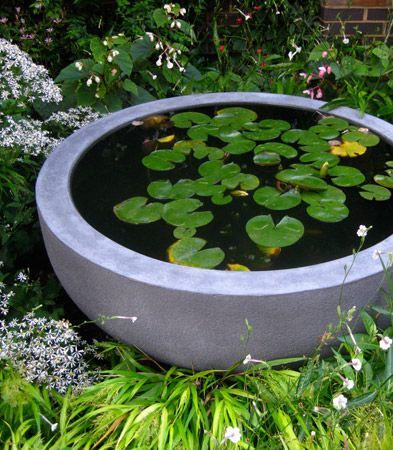 concrete bowl pond idea