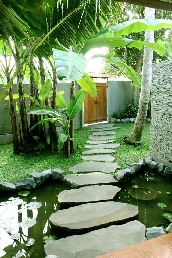 tropical landscaping with stepping stones