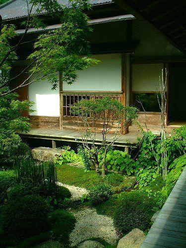 roji lush wet garden with tea house design