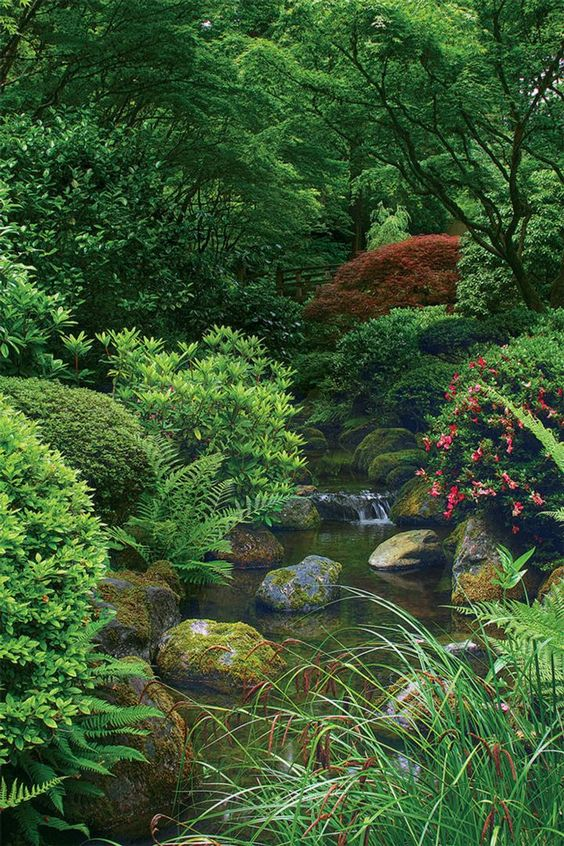 Plant is the element of Japanese garden style