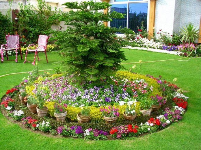 beautiful cheap landscaping ideas